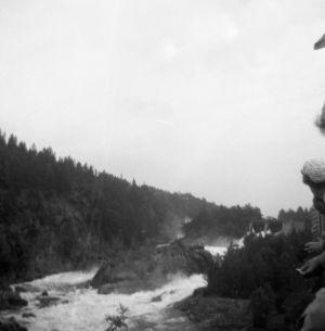 Fallen i Trollhättan